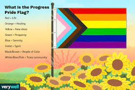 the colors of the new pride flag mean