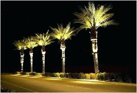 outdoor lighted trees palm tree lights outdoor outdoor designs lighted trees for indoors outdoor palm tree