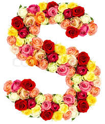 s p 500 historical charts s roses flower alphabet stock photo colourbox