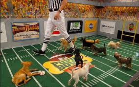 puppy bowl 2015 halftime. Brilliant Bowl Puppy Bowl 2015 In Halftime G