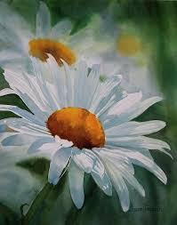 acrylic paintings of daisies white daisy painting daisies paintings white