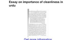 essay on importance of cleanliness in urdu google docs