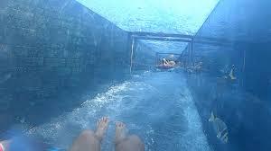 underwater water slide. Modren Slide For Underwater Water Slide