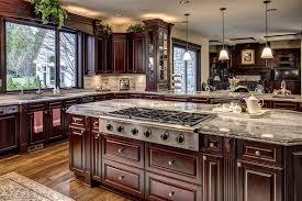 Craftsman Kitchen With Dark Raised Panel Wood Cabinets Great Ideas
