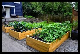 Small Picture Vegetable Garden Design Ideas Outdoor living ideas