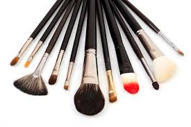 diffe types of makeup brushes stock photo image of professional 22407788