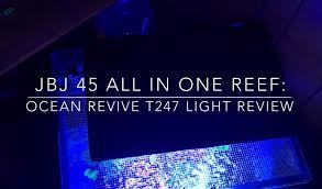 ocean revive t247 led light 8 month review