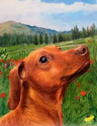 dog in field portrait by splendid beast dog playing painting