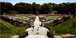 it is rose month at the new york botanical garden in the bronx where the rose garden has reopened after a comprehensive 2 5 million renovation