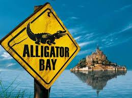 """Résultat de recherche d'images pour """"alligator bay"""""""