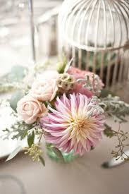 Floral Birdcages