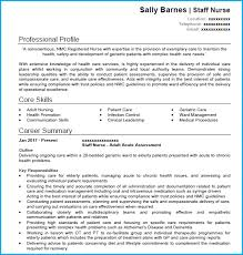 cv work history examples nursing cv example with writing guide cv template
