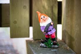 the garden gnomes are back garden id
