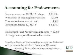 sample balance sheet for non profit non profit organization accounting helpnonprofit balance sheet