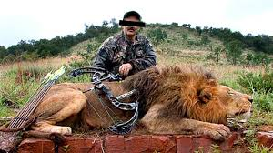 Image result for hunting