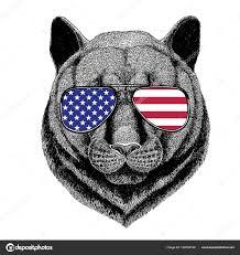 татуировки фото пума пантера Puma Cougar дикая кошка ручной