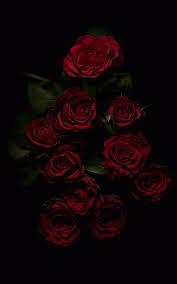 Free download Dark Flower Aesthetic ...