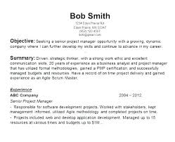 Summary Of Skills Resume Sample Interesting Sample General Objective For Resume Opening Statement For Resume