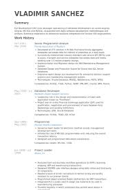 Senior Programmer Analyst Resume Samples Visualcv Resume Samples