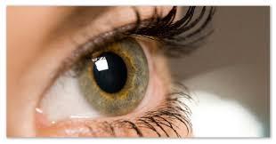 Нарушения зрения и их исправление доклад о близорукости  Доклад о нарушениях зрения