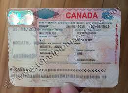 Visa make Diploma Degree Degree Fake buy And buy make Sell Online Visa Diploma Canada Buy