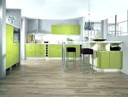 lime green kitchen cabinets staless lime green kitchen cabinet doors lime green kitchen cabinets s lime green kitchen cupboard doors