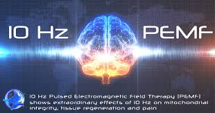 Pemf Frequency Chart 10 Hz Pulsed Magnetic Electric Stimulation Improve
