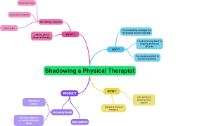 mind map physical therapy physical thereapy mind map