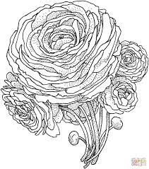 Small Picture 993 best BW coloringbook images on Pinterest Drawings