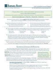 Executive Resume Writer Cto2 Jobsxs Com