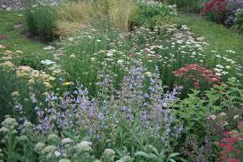 Small Picture Herb Garden Design