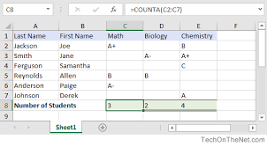 Excel Example Download Ms Excel How To Use The Counta Function Ws