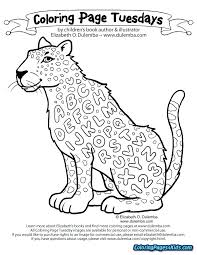 Amur Leopard Coloring Pages Leopard Coloring Page Pencil And In