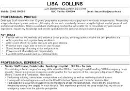 resume key skills examples skills for a resume examples skills on