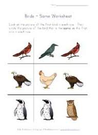 Birds Dot to dots Worksheets   Page 3 additionally Color by Syllables  Bird   Worksheet   Education additionally picture matching birds worksheet   Kid's Corner   Pinterest also bird trace worksheet   Crafts and Worksheets for Preschool Toddler additionally  also Free Printable Worksheets for Nursery  Kindergarten Senior KG as well  also  together with Birds Primary Teaching Resources and Printables   SparkleBox moreover  likewise . on birds worksheets for preschool