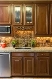Stain Oak Kitchen Cabinets Kitchen Dark Oak Kitchen Cabinets Tips Red Oak Kitchen Cabinets