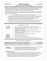technical writer resumes examples cipanewsletter cover letter technical writer resume examples resume examples