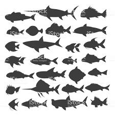 魚シルエット セット アイコンのベクターアート素材や画像を多数ご用意