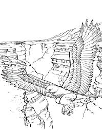 mountains coloring page bald eagle of the mountain coloring page west texas mountain lion animal coloring