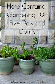 want to start an herb garden here are 5 dos and don ts to