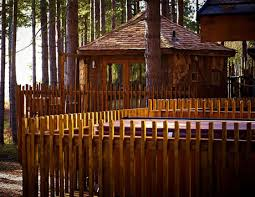 Center Parcs Sherwood Forest Treehouse Ideal For Family Weekend Family Treehouse Holidays Uk