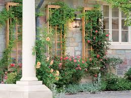 how to make a great garden trellis or arbor
