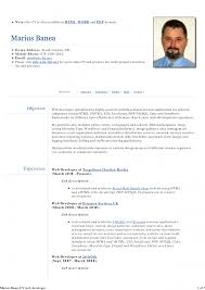 Drupal Developer Resume Examples Templates Format Example Cv
