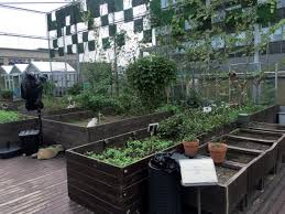 urban agriculture boon or bust