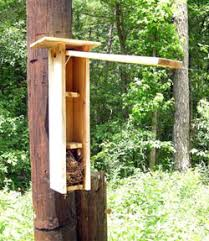 squirrel house plans. a multi-level flying squirrel nestbox. photo and box by keith kridler. see specs. house plans