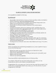 Resume Website Examples Great Resumes Examples Most Effective