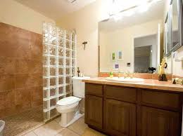 Remodeling A Bathroom On A Budget Best Decorating Ideas