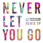 Never Let You Go [Remixes]