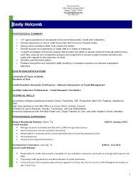 Credit Analyst Resume Example Credit Card Business Analyst Resume New Best Business Analyst Resume
