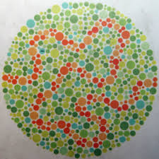 Colour Blindness Test Chart Discovery Museum Newcastle On